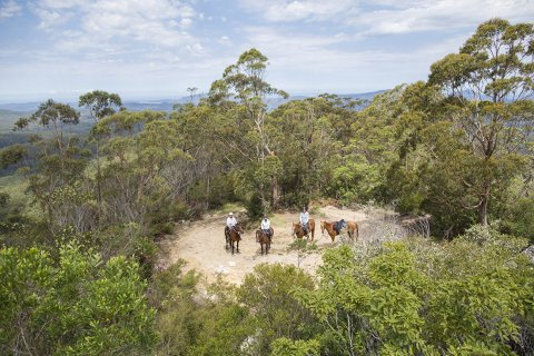 Horse Riders at Comboyne Mountain Peak Lookout NSW Australia