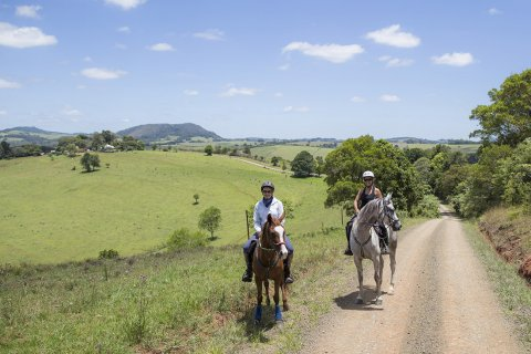 Horse Riding Port Macquarie Hinterland Comboyne NSW Australia