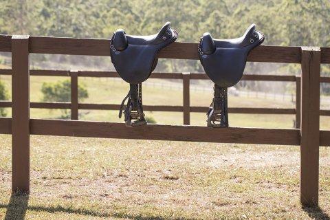 Time To Saddle Up For Australian Horseriding Trek - NSW Mid North Coast
