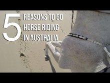 Go Horse Riding In Australia