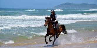 Horse Riding On The Beach Australia NSW
