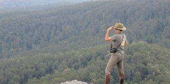 Comboyne Peak Lookout Stunning Australian Views