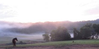 Fog Rolling In At Winter Sunset NSW Hinterland