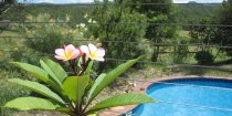Tropical Pool Setting At Kerewong Horse Riding Farm