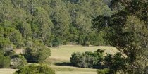 Farm View Horse Riders Cabin Accommodation Port Macquarie Hinterland NSW Australia