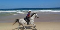 Beach Horse Riding Port Macquarie Region NSW - Horse Treks Australia