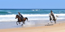 Adventures Horse Beach Holidays Australia NSW