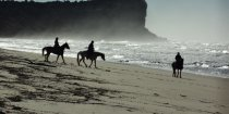 Horse Riding NSW Australian Beaches - Southern Cross Horse Treks Australia