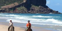 Horse Beach Riding Holidays NSW - Southern Cross Horse Treks Australia