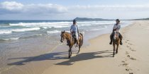 Late Afternoon Summer Horse Beach Ride Trek NSW Australia