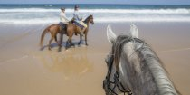 Beach Horse Riding NSW North Coast - Southern Cross Horse Treks Australia