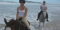 Horse Riding Beach Adventures NSW - Southern Cross Horse Treks Australia