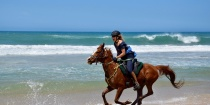 Beach Gallop Horse Riding Adventures