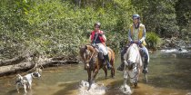 Creek At Swans Crossing Horse Riding Tours NSW North Coast