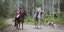 Australian Horse Riding Holiday - Bush Horse Treks NSW North Coast