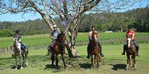 Horse Riding Holiday Group At Bago Vineyards, Port Macquarie Hinterland NSW Australia