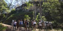 Small Group Rides Horse Treks Australia NSW North Coast