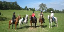 Farmland Horse Riding Treks, Port Macquarie Hinterland NSW Australia