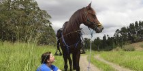 Horse Rider Resting With Arabian Horse At Comboyne - Port Macquarie Hinterland NSW Australia