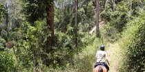 Bush Trail Riding Advanced Riders Tours Horse Treks Australia
