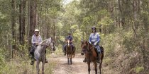 Small Group Horse Trek Holidays Australian Bush NSW