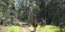 Horse Treks Australia Adventure Tour Horseriding Holidays NSW
