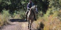 Horse Treks Australia Adventure Horseriding Tours NSW