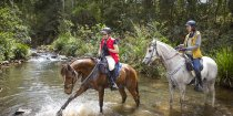 Horse Water Play And Fun On Horse Riding Weekend Getaway NSW North Coast Australia