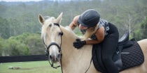 Austraian Brumby Horse Riding Holidays