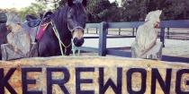 Horse Riding Holidays Australia