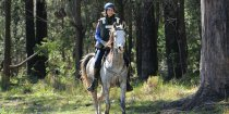 Jimmy - Horse Riding Holidays Australia Corindi Endurance Ride NSW