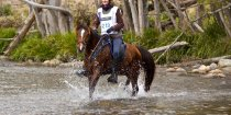 Endurance Riding NSW Australia With Kerewong Trail Horse Kuta 2014