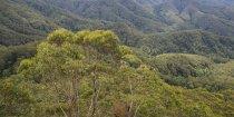 Mountain Top View Horse Trekking Natures Highlights