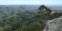 NSW Mid North Coast Natural Attractions