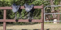 Endurance Saddles Farm Fence Horse Trekking Holidays NSW Australia