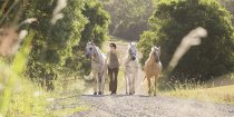 Tour Guide And Horses - Adventure Horse Riding NSW Country Trail Riding Holidays Australia