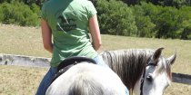 Australian Horse Riding Holiday Farm