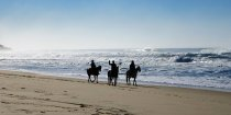 Beach Horse Riding Mid North Coast NSW - Horse Treks Australia