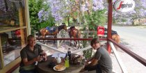 Horse Riders Lunch At Hannam Vale Store In November Australian Spring