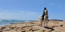 Beach Horse Riding Australia Horseback Riding Holidays