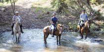 Creek Crossing Small Group Horse Riding Holiday Tours NSW Australia