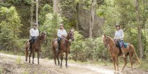 Horse Riding Tours Small Groups Mid North Coast NSW Australian Horse Trekking