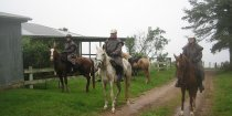 Misty Horse Riding Day At Comboyne Plateau NSW Australia