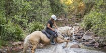 Ness - Creek Crossing Horseback Riding Tours NSW Australia